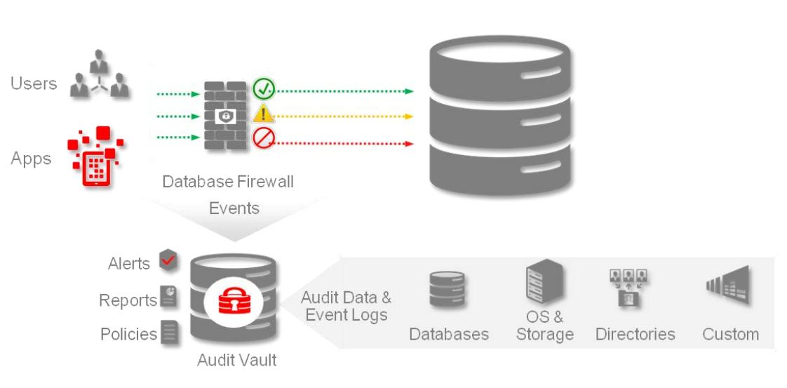 Veri Tabanı Güvenliği Eğitimleri